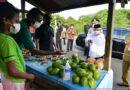 Penjual Pinang di Manokwari Minta Dibangun Pondok Pinang
